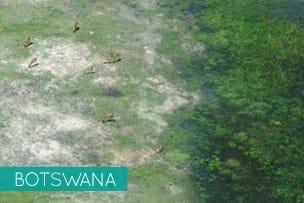 Kwando Journeys