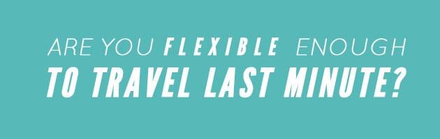Flexi Offers Safari