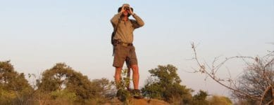 Who are the safari guides in Africa?