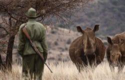 Lewa Safari, Kenya