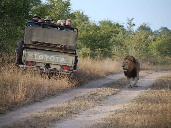 Senior citizens on safari in Africa