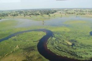Okavango Delta, Botswana Tours