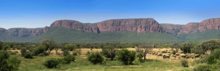 Marataba South Africa