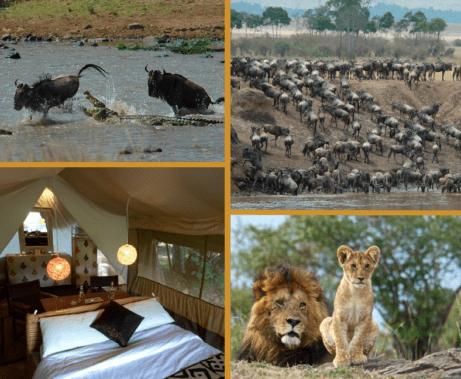 Spekes Camp Masai Mara