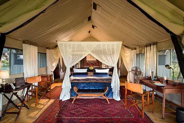 Duba Expedition Camp Interiors