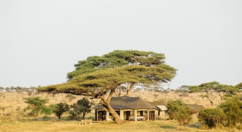 Namiri Plains lounge