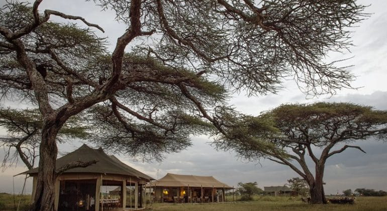 Namiri Plains lounge and mess tent
