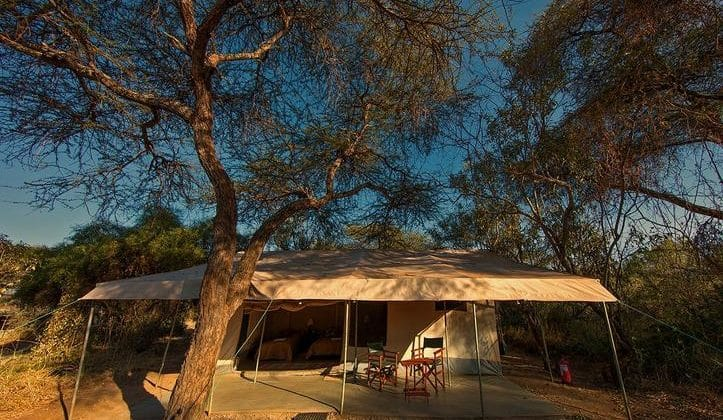 Porini Amboseli Camp - Tent