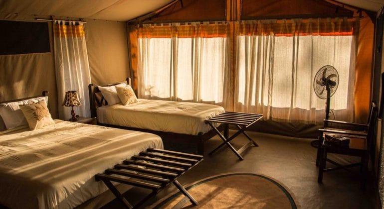 Porini Cheetah Camp - Guest tents