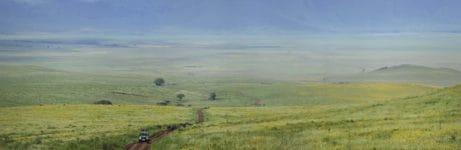 The Highlands Ngorongoro Crater