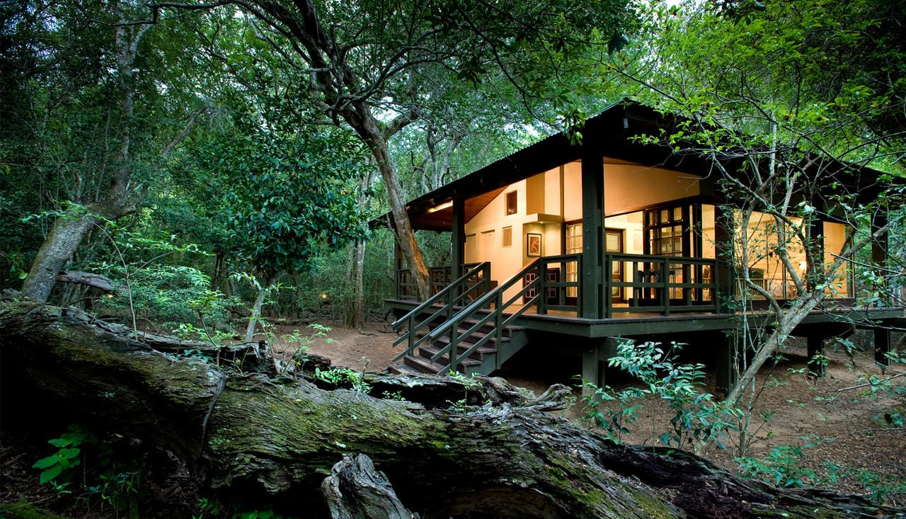 Phinda Forest Lodge Room