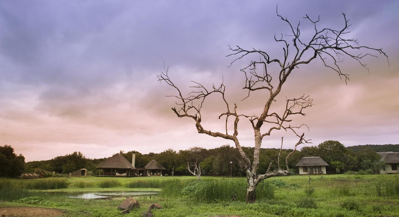 Phinda Zuka Lodge View