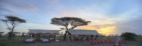 Serengeti Under Canvas View