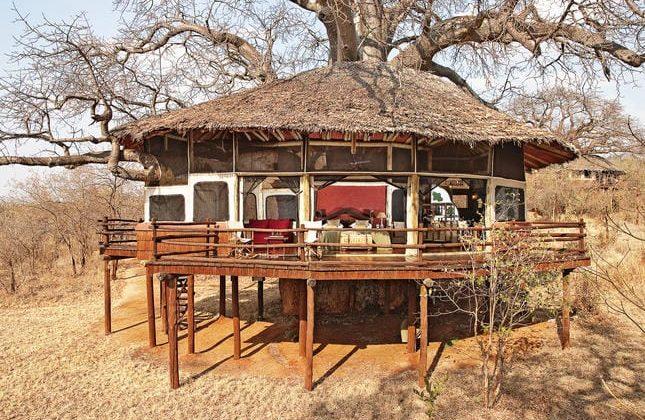 Tarangire Treetops Room (1)