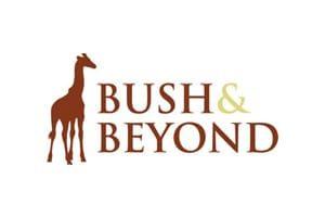 Bush And Beyond Logo