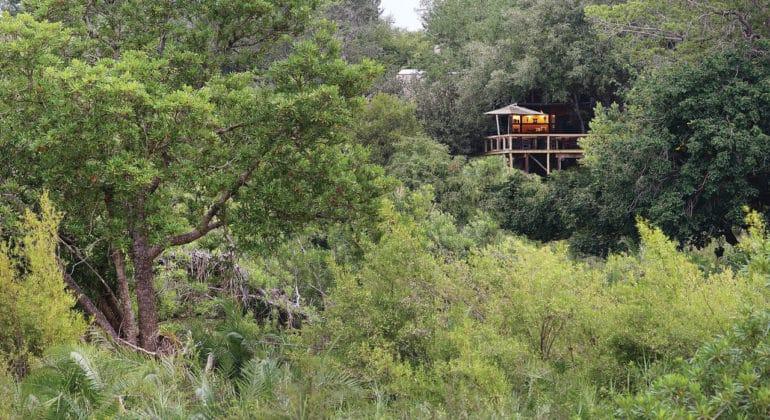 Londolozi Tree Camp View