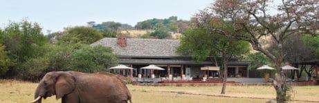 Serengeti House View