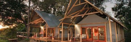 Chitabe Lediba Camp Family Tent