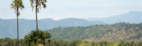 Kuthengo Camp View