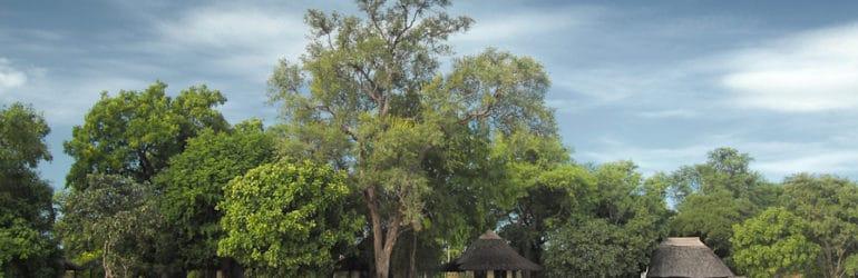 Nsefu Camp View