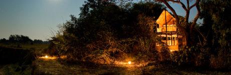 Chikoko Trails View At Night