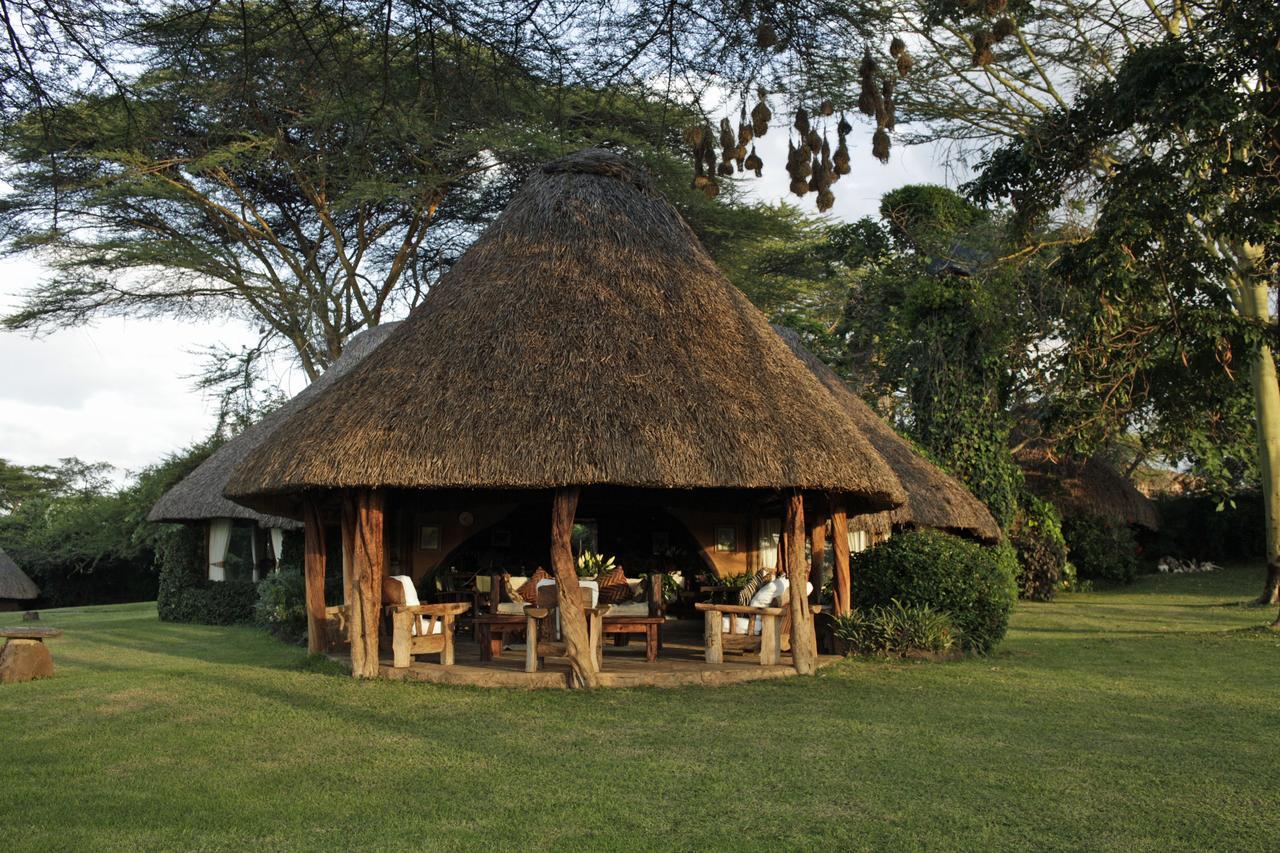 Lewa House Main House Verandah