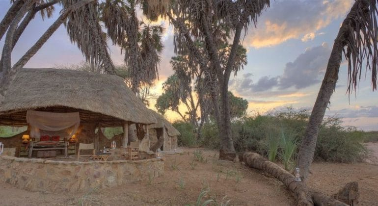 Saruni Rhino Outdoor View