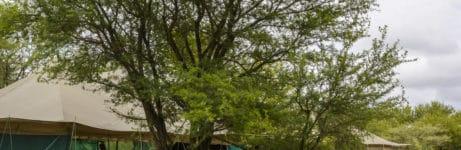 Serengeti Wilderness Camp View 1