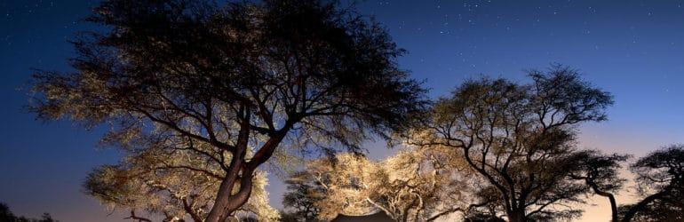 Somalisa Expeditions View