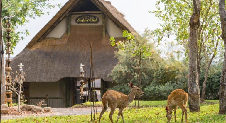 Victoria Falls Safari Club Front View