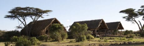 Ekorian's Mugie Camp Tents