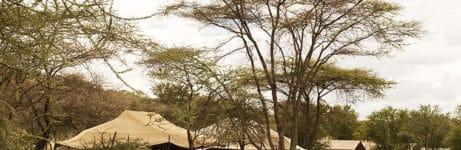 Mara Kati Kati Tented Camp View