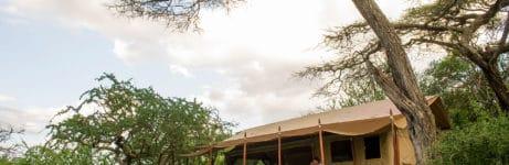 Mwiba Tented Camp Tent
