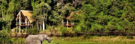 Savute Safari Lodge View