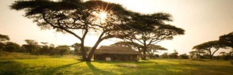 Serengeti Mobile Kusini View
