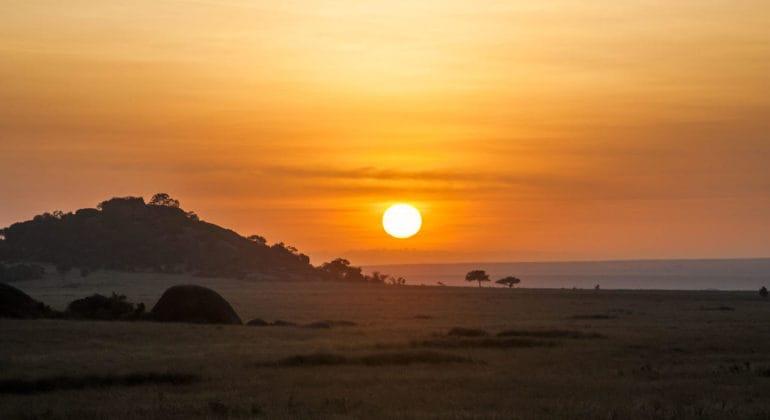 Serengeti Safari Camp View