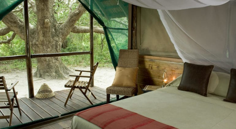 Kosi Forest Lodge Room