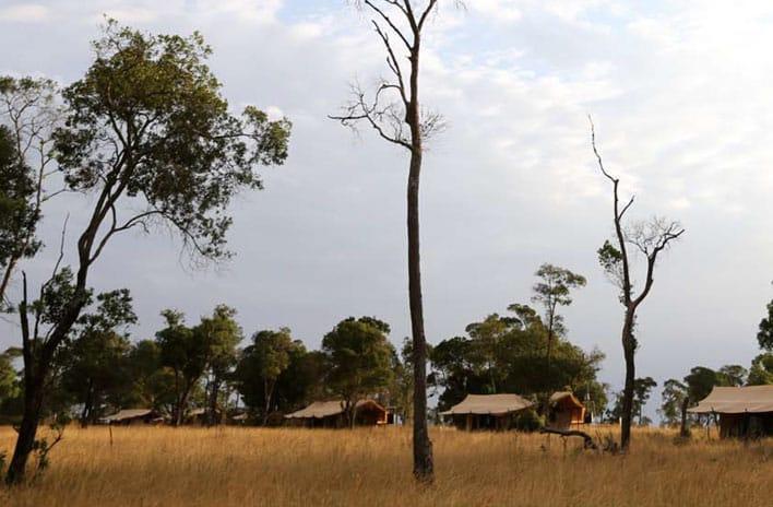 Lemala Ndutu Mobile Tented Camp View