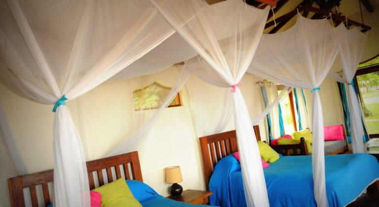 Pinneapple Bay Room