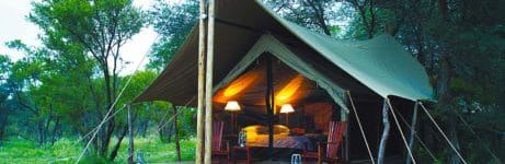 Rhino Walking Safari Tent Exterior