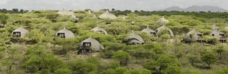 Serengeti Serena Safari Lodge Overview