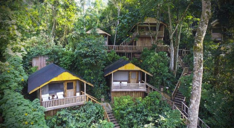 Buhoma Lodge View