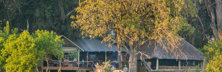 Kwando Kwara Camp View