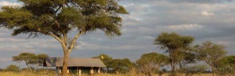 Naabi Private Camp Tent