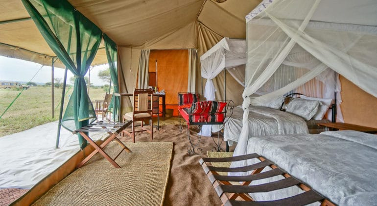 Naabi Private Camp Tent Room