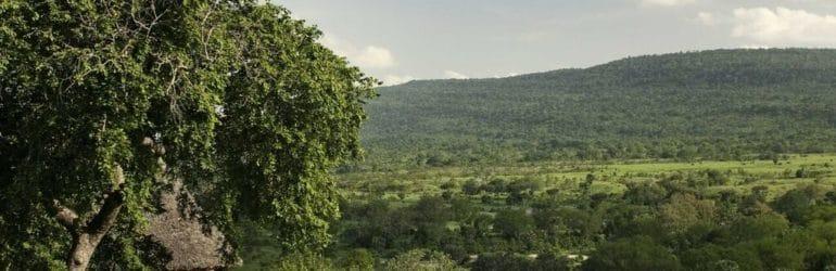 Beho Beho View