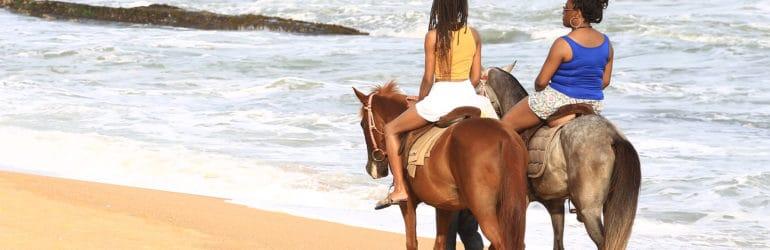 Coconut Grove Beach Resort Horse Riding