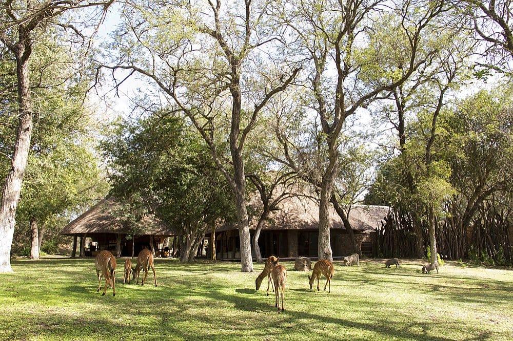 Dulini Lodge View