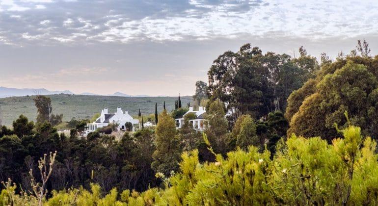 Galenia Estate View