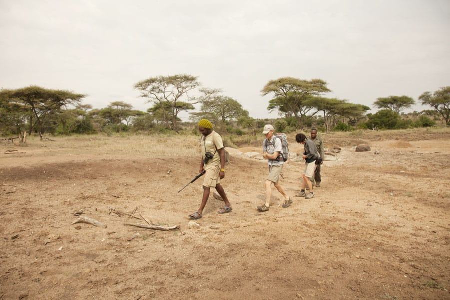 Wayo Serengeti Walking Camp Guided Walks